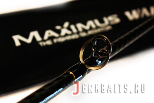 Maximus - Warrior