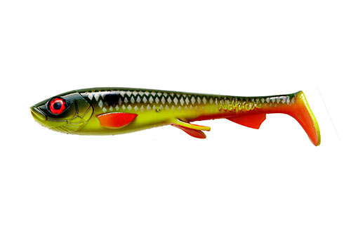 Wolfcreek Shad WC017R