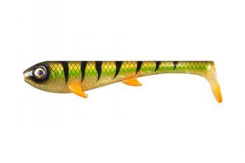 Golden-Perch